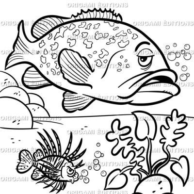 Dessin aquarium carpe