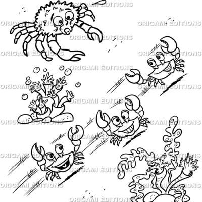 Dessin aquarium crabe
