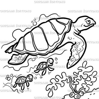 Dessin aquarium tortue