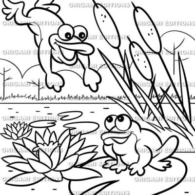 Dessin jardin grenouille