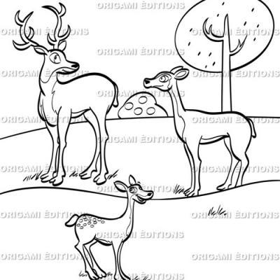 Dessin parc animalier biche
