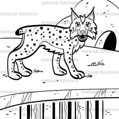 Dessin parc animalier lynxs