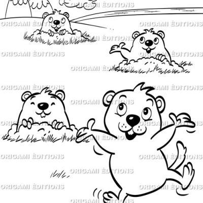 Dessin parc animalier marmotte