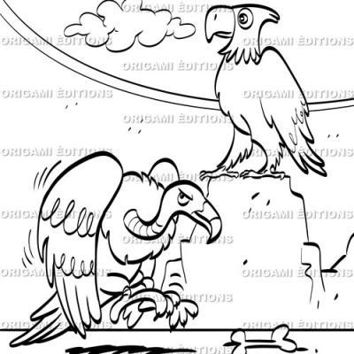 Dessin parc animalier vautour