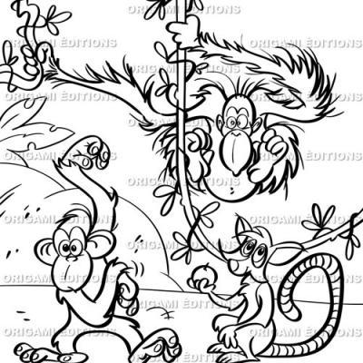 Dessin zoo singe