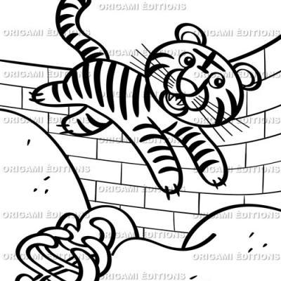 Dessin zoo tigre
